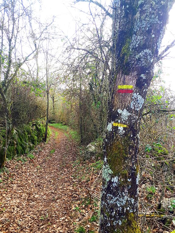 Saint Léons chemin balisé